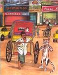 The Calcutta Cat