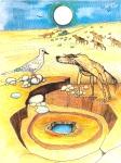 The Deranged Dingo