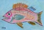 Cindy's Fish