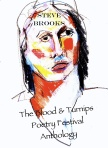 The Blood & Turnips Poetry Festival Cover