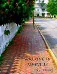 Walking in Asheville Cover